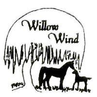 willow-wind.jpg