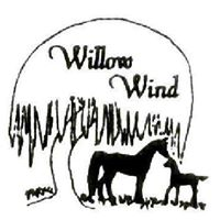 willow-wind.jpg