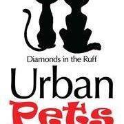 urban_pets.jpg